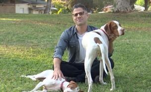 כלבים בישראל- ראיון עם גדעון אוקו  (צילום: החדשות 12)