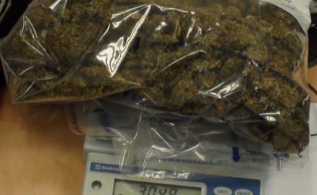 מבצע משטרתי כנגד עבירות הסחר וההפצה של סמים מסוכנים (צילום: דוברות המשטרה)