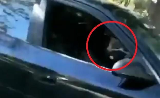 חלון פתוח ברכב (צילום: צילום מסך twitter)