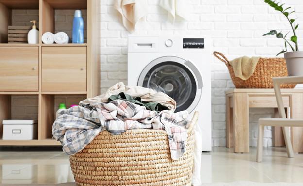 חדר כביסה (צילום: Pixel-Shot, Shutterstock)