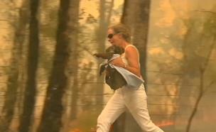 הקואלה שניצלה משריפה באוסטרליה (צילום: רויטרס)