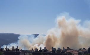 שרפה שפרצה סמוך למבשרת ציון (צילום: דוברות כבאות והצלה)