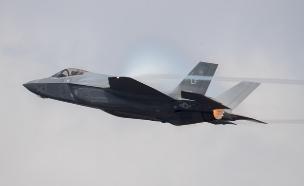 F-35 חמקן (צילום: Matt Cardy/Getty Images)