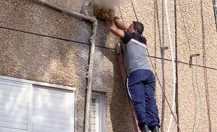 שחר עזריאל מציל את הכלבה לולה (צילום: מורן גורן)