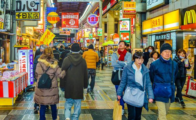 יפן (צילום: DFLC Prints, shutterstock)