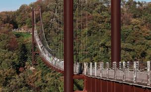יפן (צילום: Imen Jebri, shutterstock)