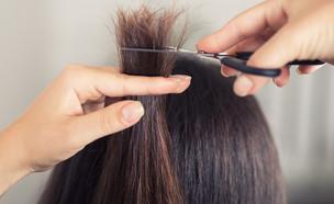 קצוות שיער (צילום: shutterstock By Alter-ego)