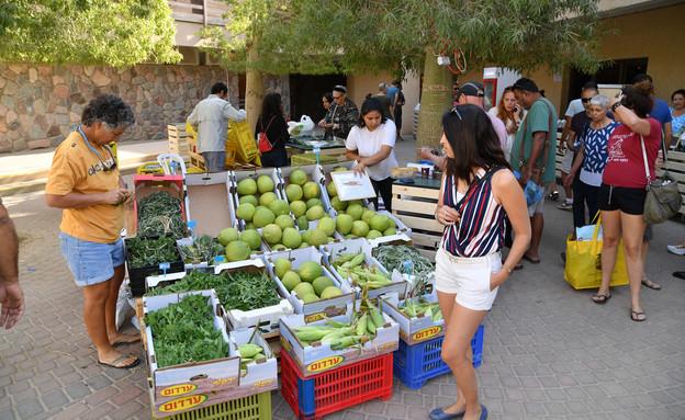 שוק איכרים חבל אילות (צילום: יוד צילומים)