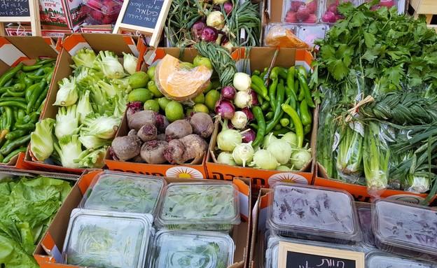 שוק איכרים חבל אילות (צילום: ליטל שמואלי)