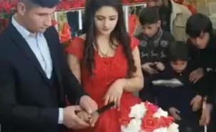 בלאגן בחתונה (צילום: פייסבוק\Leylam)