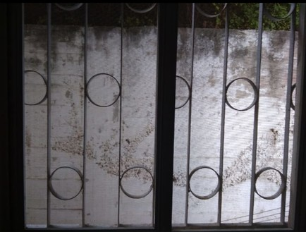 הקיר מחוץ לחלונה של ניצולת השואה נצבע במיוחד
