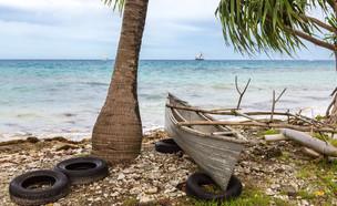 קאנו, צמיגים ועצים בחוף טובאלו (צילום: maloff, ShutterStock)
