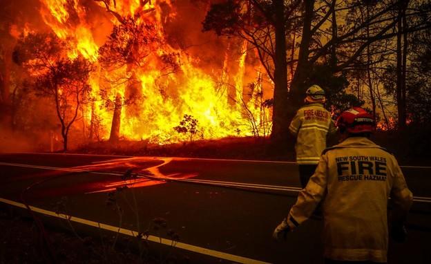 השריפות באוסטרליה (צילום: skynews)