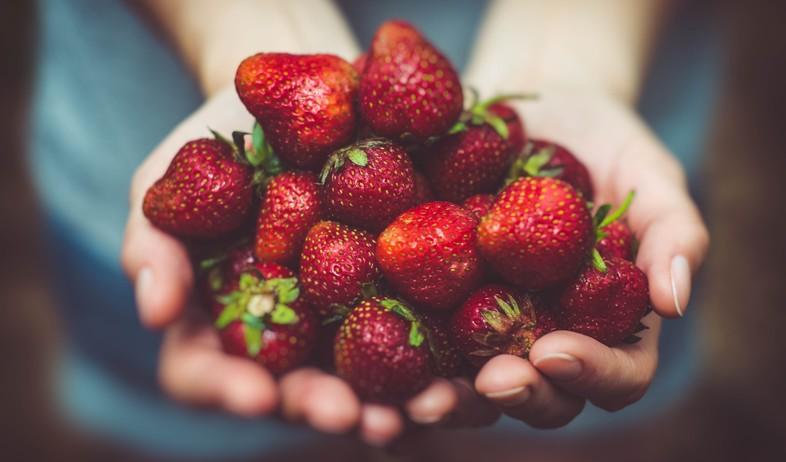 תותים (צילום: Artur Rutkowski on Unsplash)