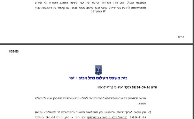 פסק דין אורטל בן דיין, ינואר 2020 (צילום: צילום מסך)