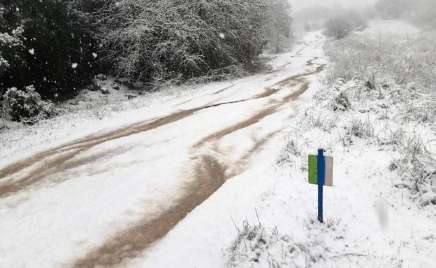 שמורת טבע רכס בשנית, שביל הגולן (צילום: אוריה ואזנה, רשות הטבע והגנים)