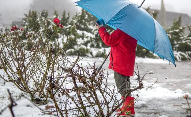 שלג בחרמון (צילום: רוני עוז רייזנר)