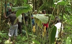 הזירה בה נמצאו גופות הקורבנות (צילום: skynews)
