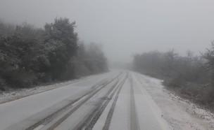 שלג החל לרדת בשמורת הר מירון (צילום: גיא זהרוני, רשות הטבע והגנים)