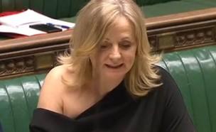 חברת הפרלמנט והלבוש שעורר סערה (צילום: skynews)