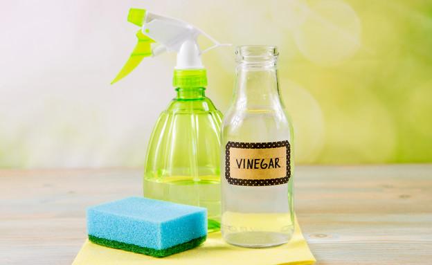 חומרי ניקוי טבעיים, חומץ, סודה לשתייה (צילום: FotoHelin, Shutterstock)