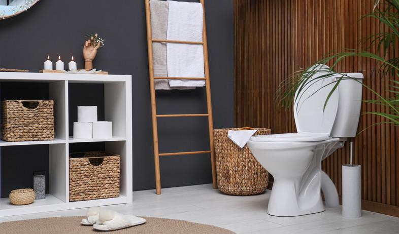 חדר רחצה, שירותים (צילום: New Africa, Shutterstock)