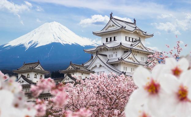 יפן (צילום: צילום מסך מתוך ווטסאפ)