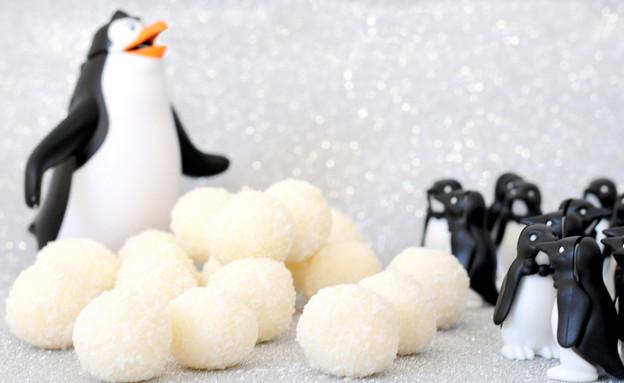 כדורי שלג (צילום: שרית נובק - מיס פטל, אוכל טוב)