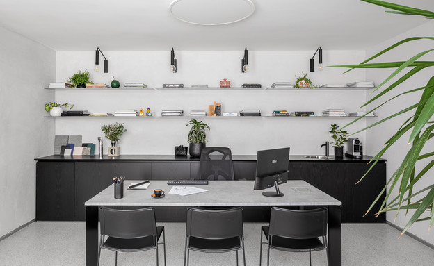 משרד ביתי 1, עיצוב ענבל סיני (צילום: טל ניסים)