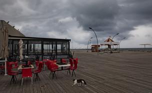 קורונה בישראל - נמל תל אביב היום (צילום: Oded Balilty, AP)