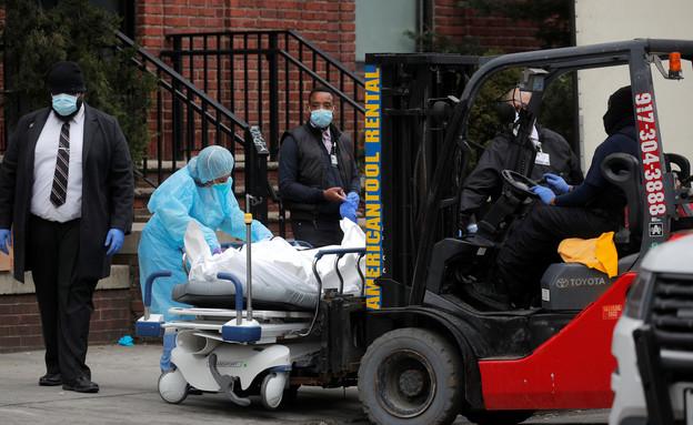 פינוי גופות מתים מקורונה בניו יורק (צילום: שי פרנקו, רויטרס)