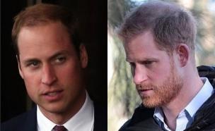 הנסיך וויליאם והנסיך הארי. אפריל 2020 (צילום: instagram)