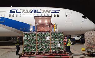 משלוח של כמיליון ביצים נחת בישראל (צילום: לסר, גלובס)