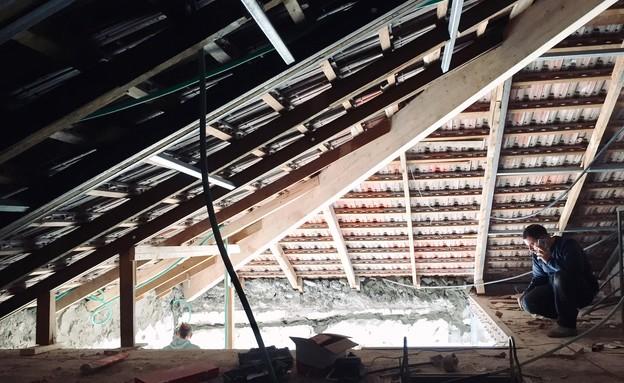 טל רוזין, עליית גג לפני - 2 (צילום: טל רוזין)
