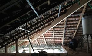 טל רוזין, עליית גג לפני השיפוץ (צילום: שי אפשטיין)