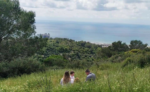 חיפה (צילום: טאלי אנדצויג גולקו)