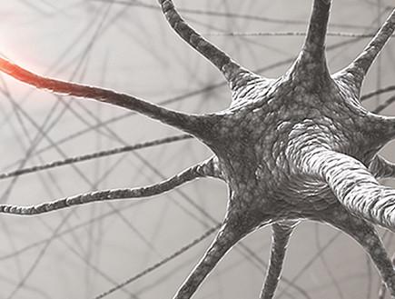NeuroSense