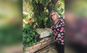 ורדה ליד הקבר של גל (צילום: באדיבות המשפחה)