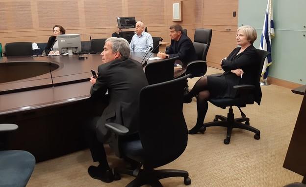 ישיבת ועדת חוץ וביטחון (צילום: דוברות הכנסת)