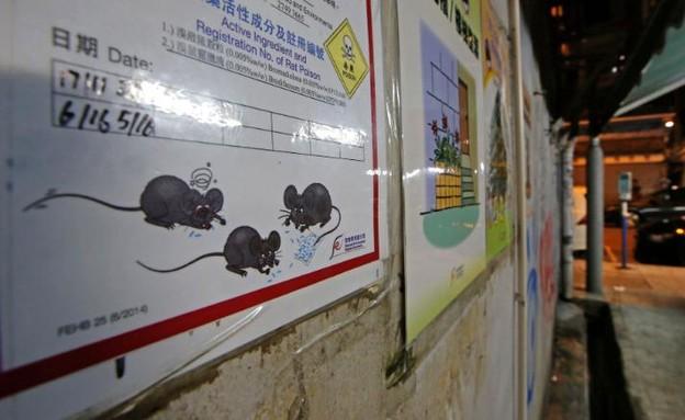 אזהרה מפני רעל לעכברושים, הונג קונג
