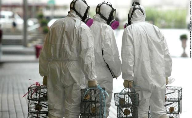 הצבת מלכודות עכברושים בהונג קונג  (צילום: CNN)