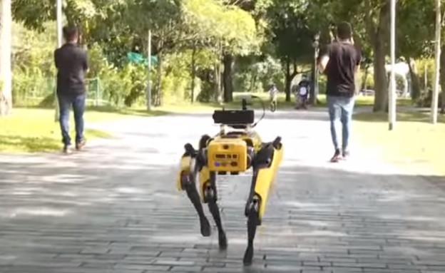 רובוט כלב (צילום: יוטיוב\CNA)