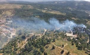 השרפה ביער הנשיא הסמוך לצרעה (צילום: דוברות כבאות והצלה)