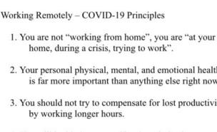 הנחיות העבודה מהבית שקיבל עובד קנדי (צילום: Mark Richardson, צילום מסך)