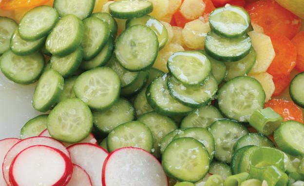 סלט עיגולי ירקות (צילום: דניה ויינר, ארוחת ילדים, מיכל וקסמן, הוצאת ידיעות ספרים)