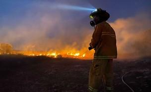 שרפה סמוך לאלעד (צילום: דוברות כבאות והצלה)