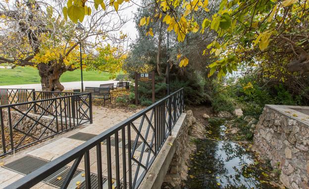"""פארק המעיין (צילום: סוכנות גני, ארכיון הצילומים של קק""""ל)"""