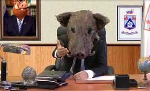 חזיר הבר מס' 1 בחיפה (צילום: ארץ נהדרת, קשת 12)