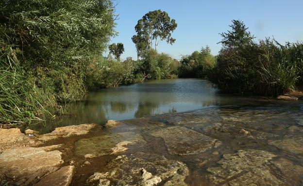 """פארק הירקון (צילום: ששון תירם, ארכיון הצילומים של קק""""ל)"""