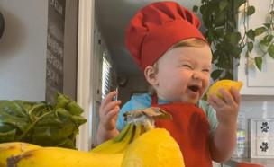 השף קובי בן השנה (צילום: instagram)